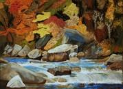 pastel,sous-bois, automne, torrent, Canada, Québec